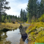 Coldstream, Truckee – Quiet Use